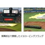次代を担う若トラと、7月の阪神タイガースイベント情報について